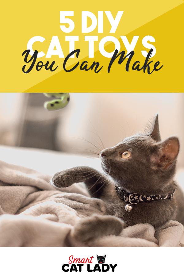 5 Diy Cat Toys You Can Make Cat Toys Diy Cat Toys Cats