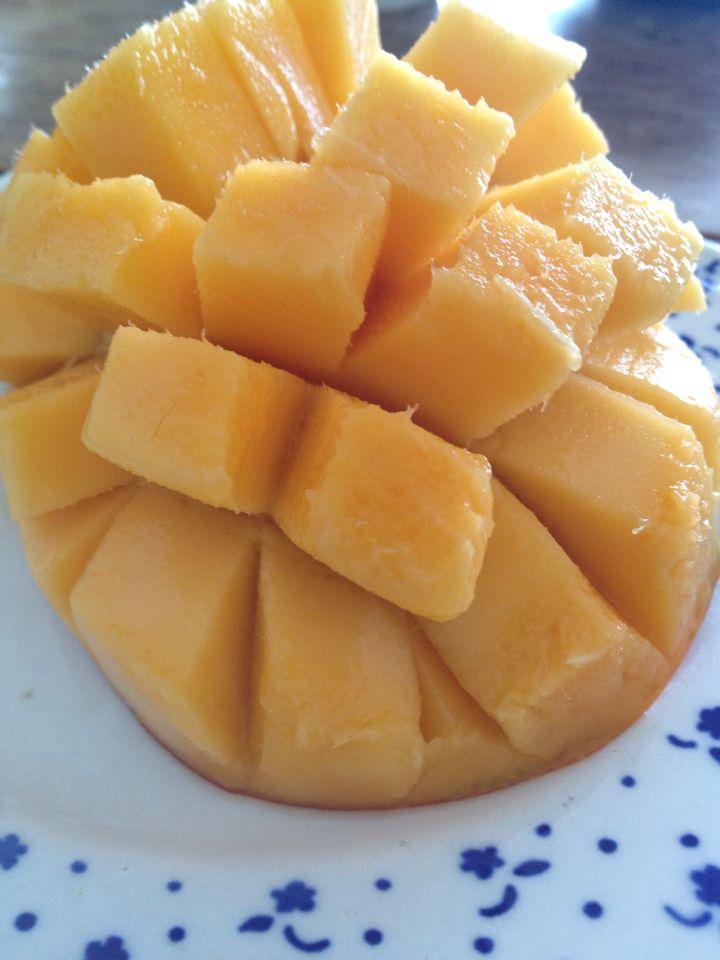 沖縄マンゴー  mango いえいいえい