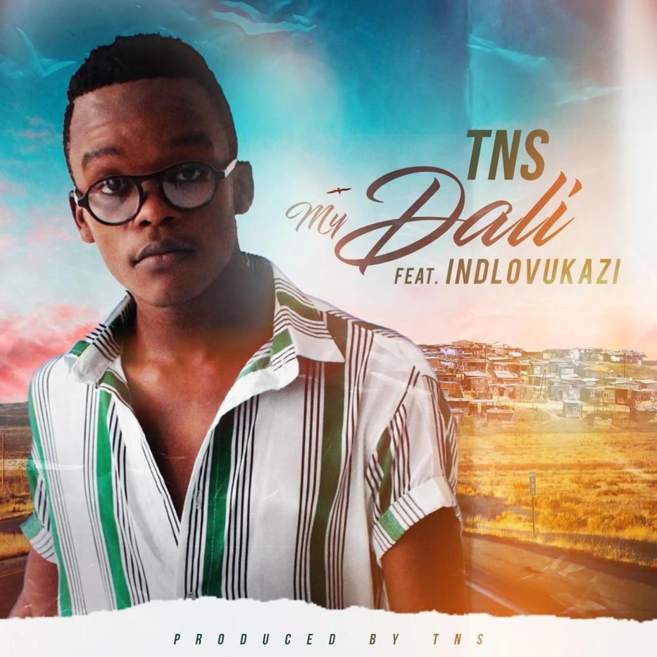 Tns My Dali Ft Indlovukazi Techno Bros House Villains Bootleg In 2020 Latest Music Videos African Music Music Download