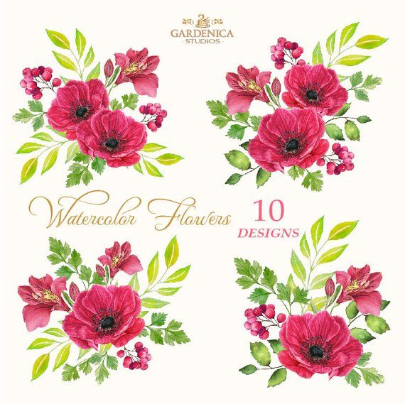 Watercolor Flowers Anemone Clipart Red Vintage Flowers Red