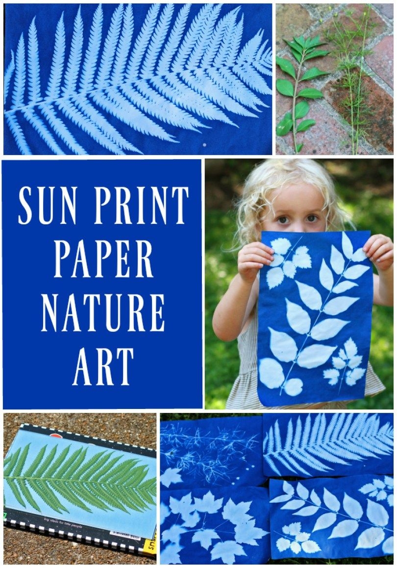 Making Sun Print Nature Art with Kids - Run Wild M
