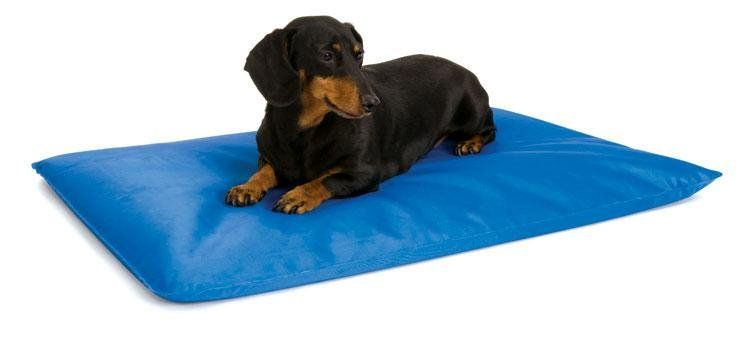 Keep Your Dog Cool With The Cool Bed Available At Www Canvasbackpets Com Cool Dog Beds Dog Bed Cool Beds