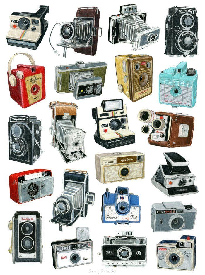 Illustrations Of Vintage Cameras By Christine Berrie In 2020 Vintage Cameras Camera Art Retro Camera