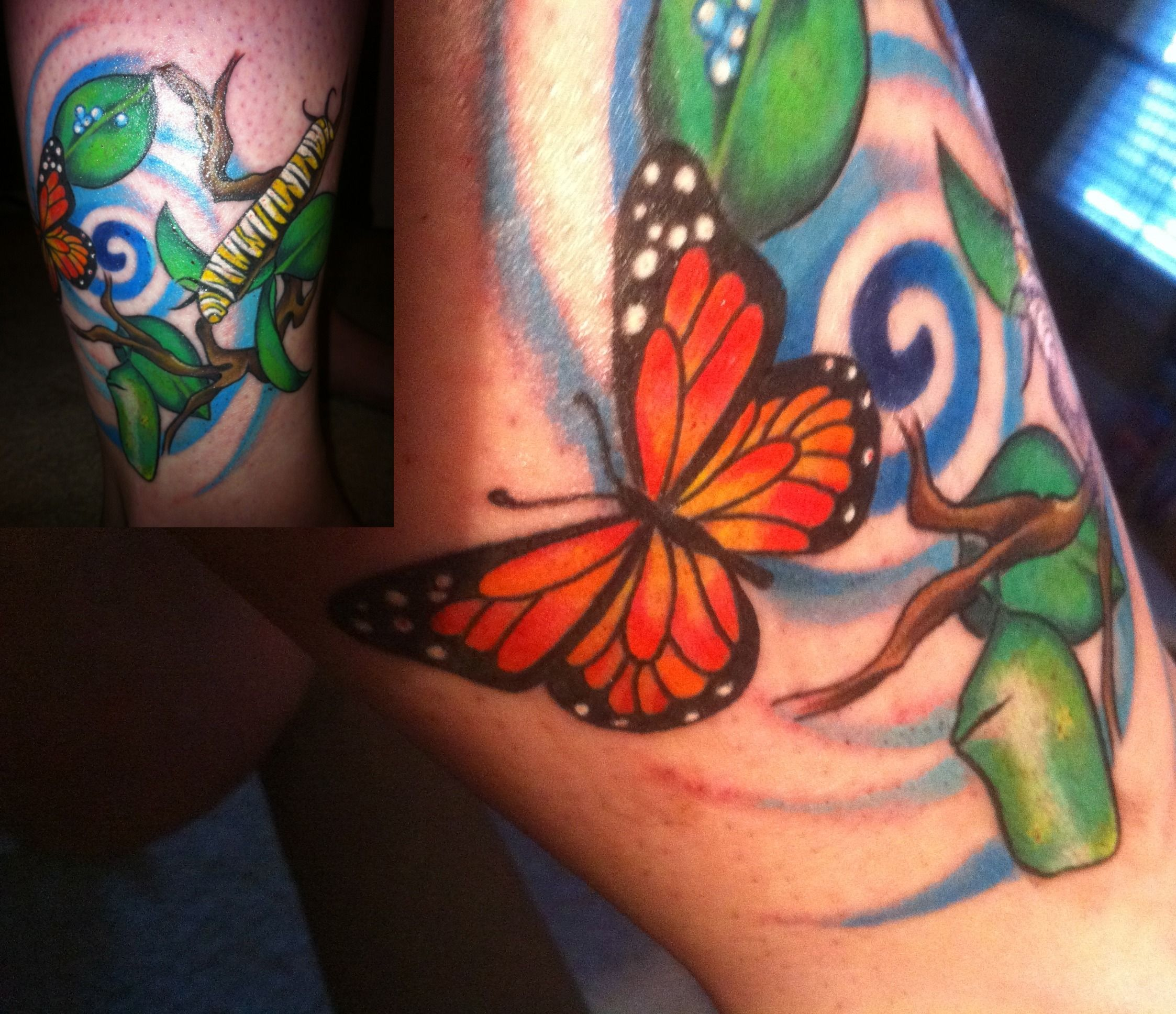 My Butterfly Life Cycle Tattoo Just When The Caterpillar