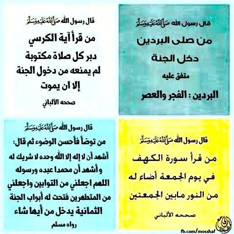 Desertrose أحاديث نبوية شريفة Jouy Islam Reminder