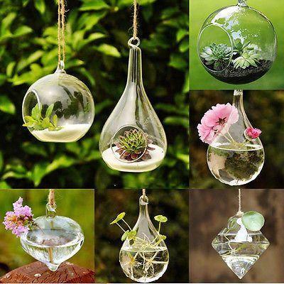 14++ Hanging ball clear glass vase centerpiece trends