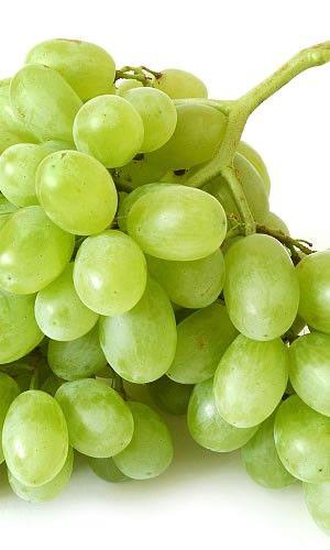 Pin di federica wine gift baskets boxes su wine grapes for Succhi di frutta fatti in casa