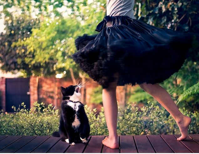 Happiness: Twirling With Kitty