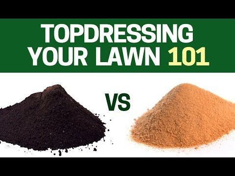 967043096e How to Top Dress Your Lawn Using Sand or TopSoil? Level Your LAWN For  Beginners - YouTube