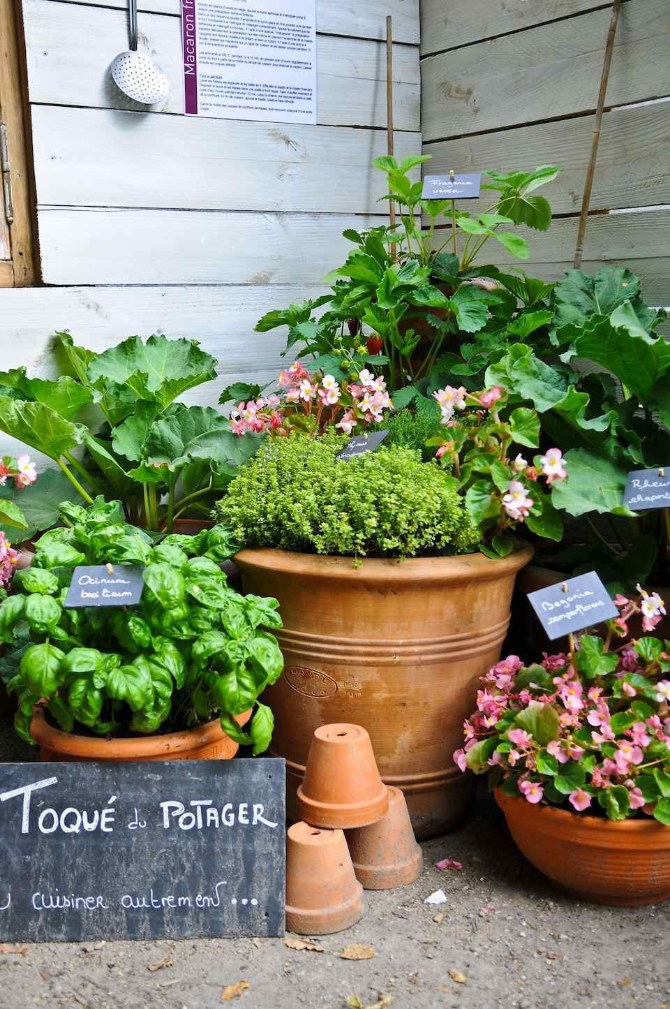 Potager en carr ou en pots pour petits espaces jardin for Plante pot jardin