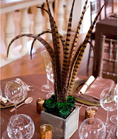 Incorporating pheasant feathers coffee beans and green