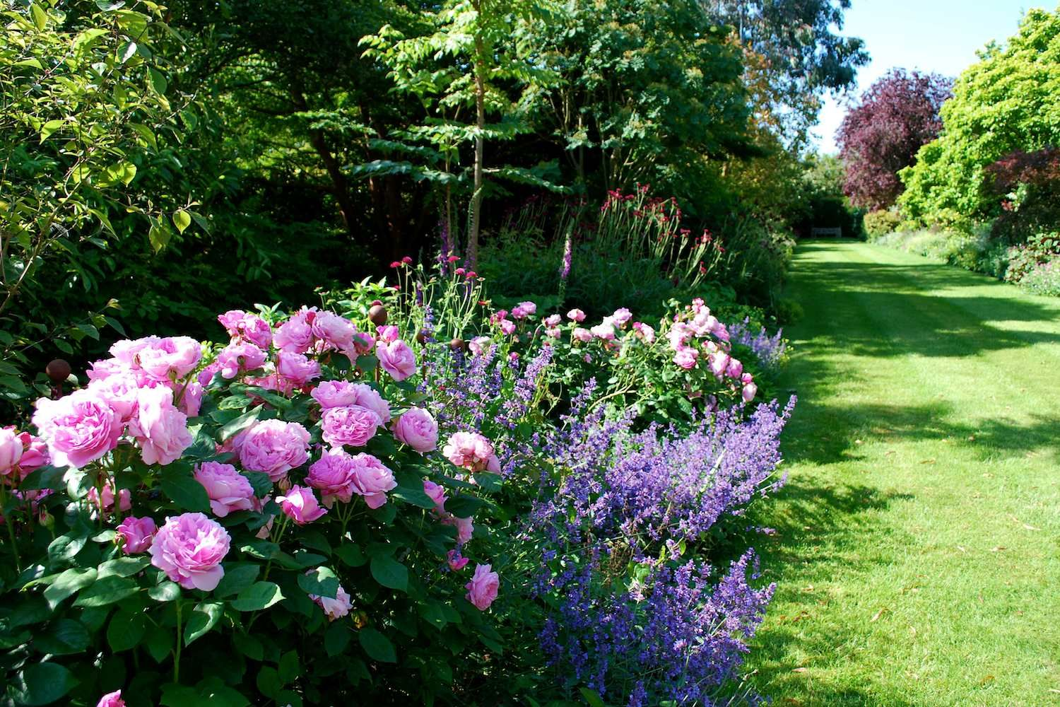 traditional english garden goudhurst kent uk jo thompson landscape and garden design - Garden Design Kendal