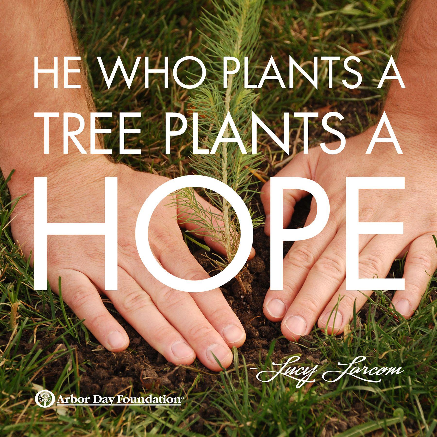 """""""He who plants a tree plants a hope."""" Lucy"""