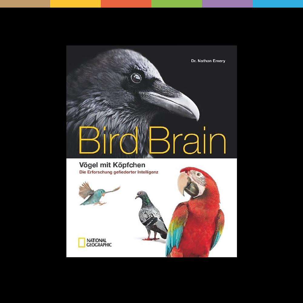 Eitler Pfau, diebische Elster, Friedenstaube. Alles mögliche schreiben wir Vögeln zu - außer Intelligenz. Dabei steckt in vielen dieser Tiere ein kleiner Einstein. Dieser naturwissenschaftliche Bildband belegt, dass Vogelhirne hoch entwickelt und zu phänomenalen Leistungen imstande sind: abstrakte Aufgaben lösen, sich selbst im Spiegel erkennen, Erfahrungen sammeln. Spannende Storys aus der Forschung mit pfiffigen Krähen und raffinierten Raben.