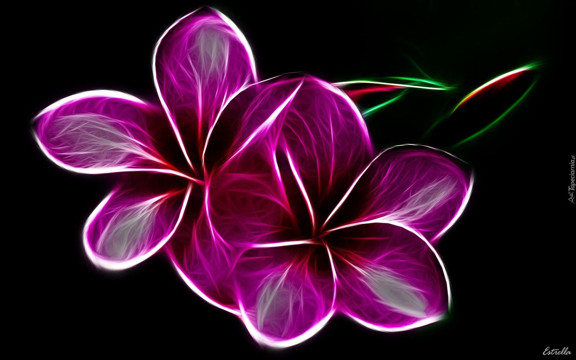 Pin By Beti0x On Tapety Grafika Komputerowa Tapeciarnia Pl Purple Flowers Flower Art Flower Images