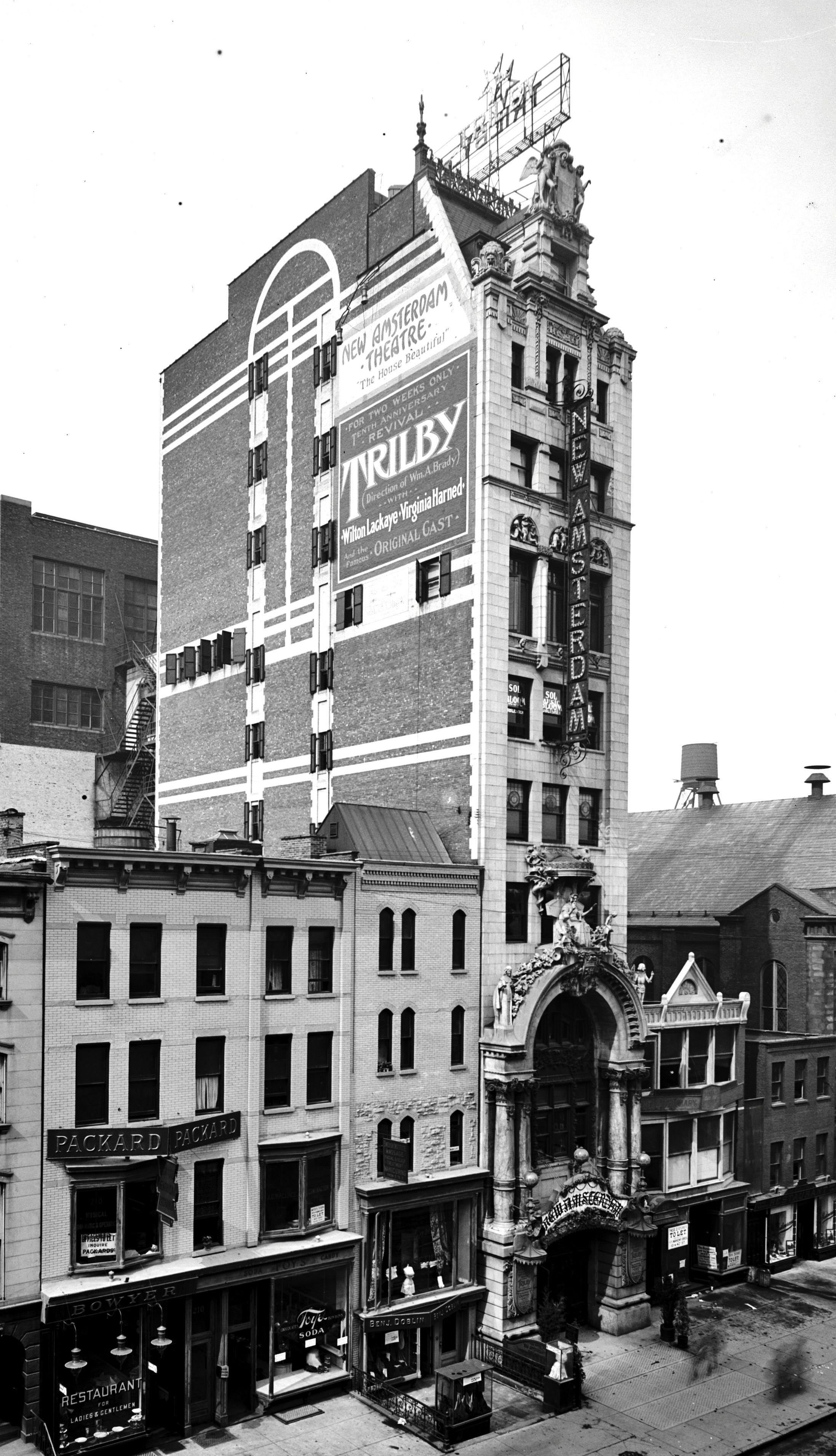 new amsterdam theater 42nd st new york 1905 art nouveau