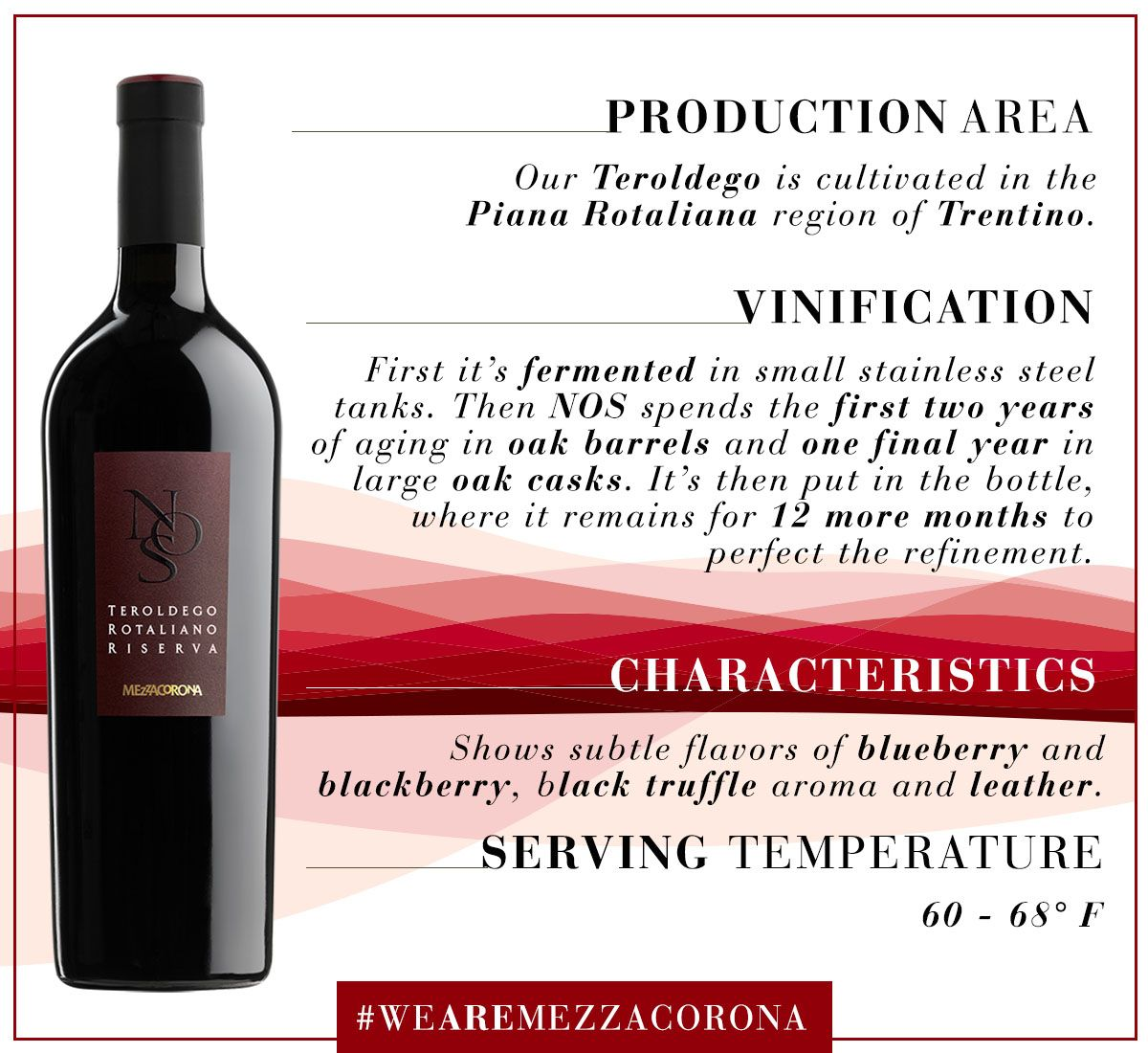 A Tale Of Teroldego From Vine To Glass Wearemezzacorona Vinification Wine Bottle Stainless Steel Tanks