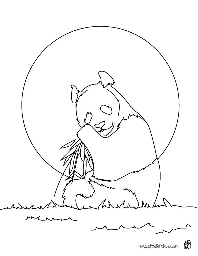 giant panda coloring page more asian animals coloring. Black Bedroom Furniture Sets. Home Design Ideas
