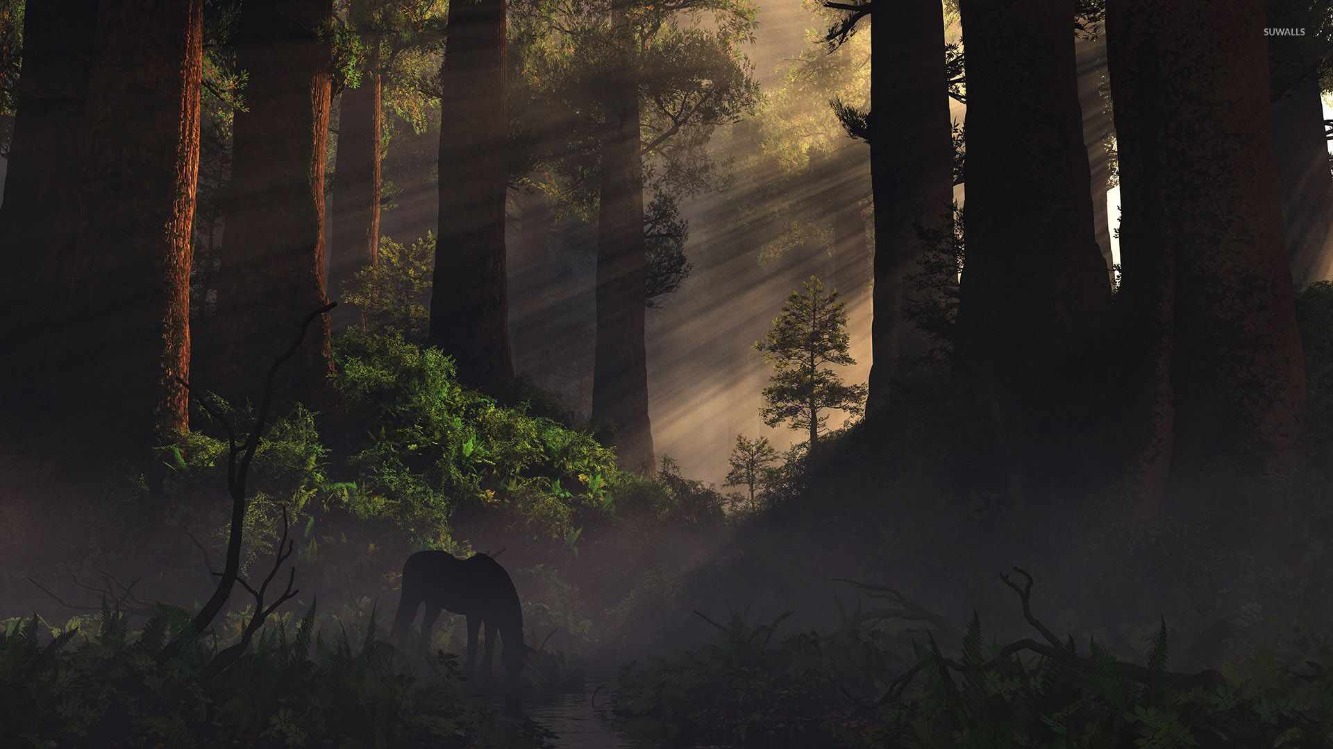 Horse In The Forest Wallpaper Forest Wallpaper Art Horse Wallpaper Wallpaper fantasy horse night forest art