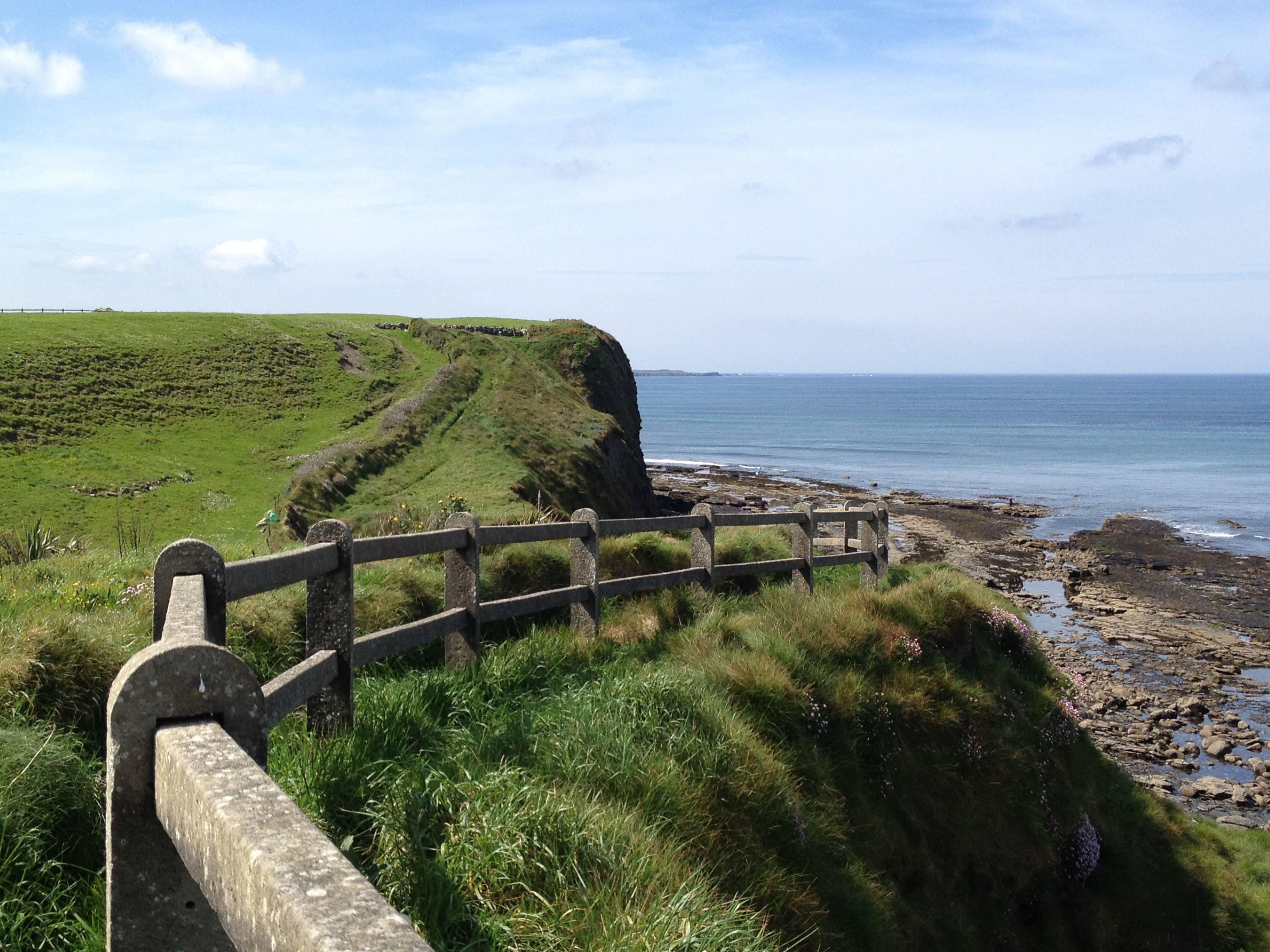 "My latest travel piece: ""Sheep, Stew, and Sea: Three Days in Ireland"" http://newlittlehabitats.wordpress.com/2012/09/23/sheep-stew-and-sea-three-days-in-ireland/ #travel #ireland"