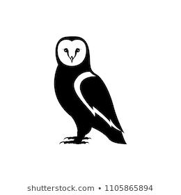 Pin On Owl