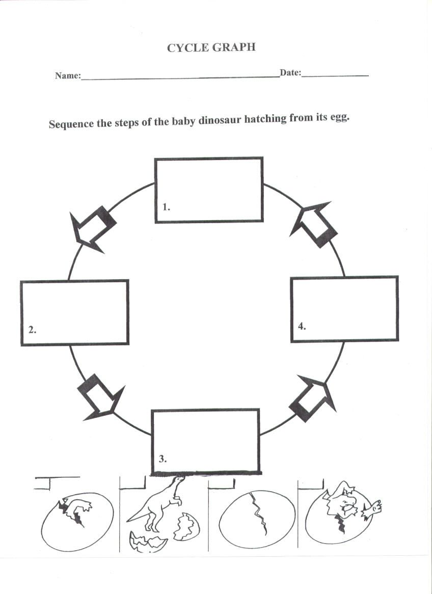 worksheet Life Cycle Of A Plant Worksheet 17 images about science for our classroom on pinterest the planets life cycles and experiments