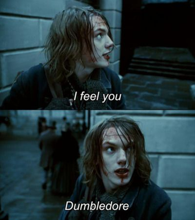 Do They Think That Walls Could Hide Dumbledore Harry Potter Movies Harry Potter Jamie Campbell Bower