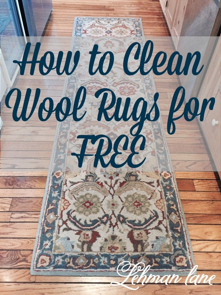 How To Clean Wool Rugs For Free With Snow Clean Wool Rug