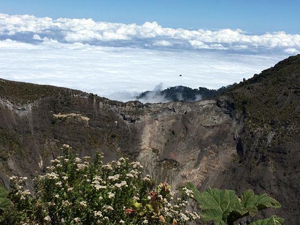 vegetation in the crater of the volcano Irazu, Costa Rica
