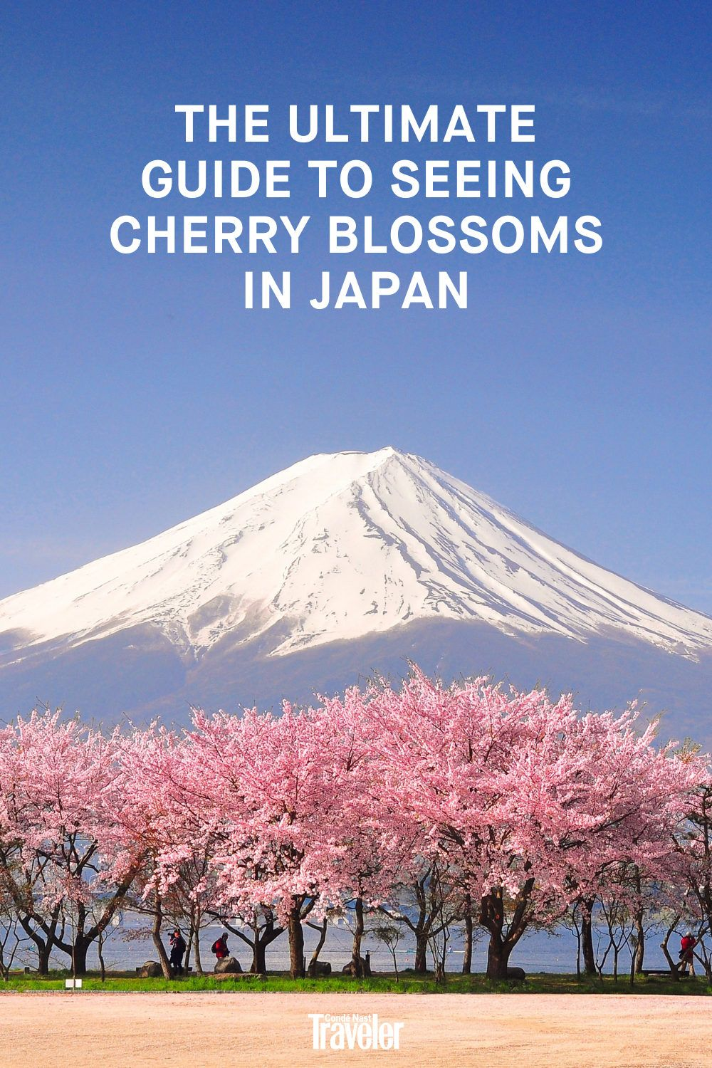 The Best Places To See Cherry Blossoms In Japan In 2021 Cherry Blossom Japan Travel Inspiration Destinations Japan