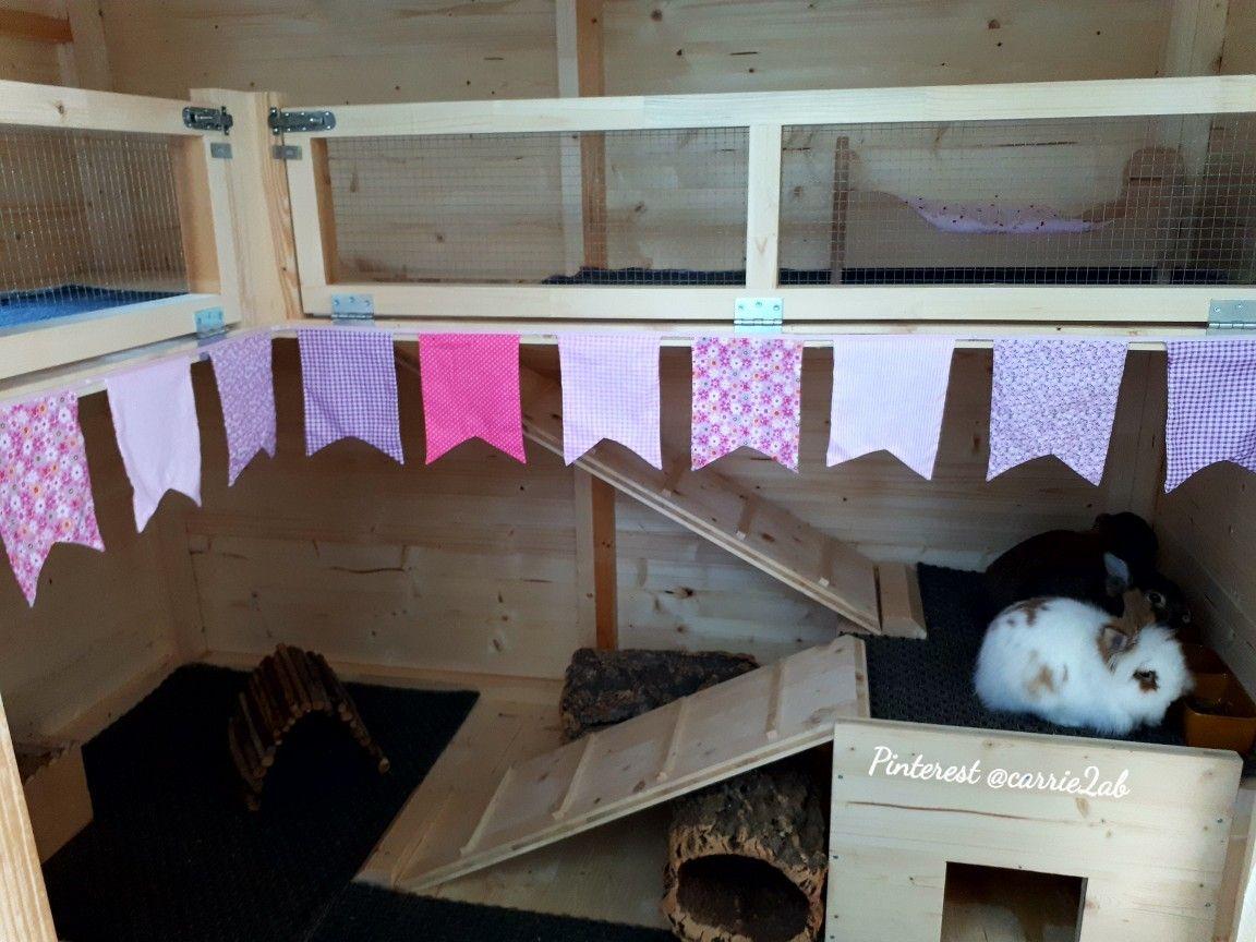 Rabbit Care Advice Best 4 Bunny Rabbit Shed Bunny Sheds Rabbit Care