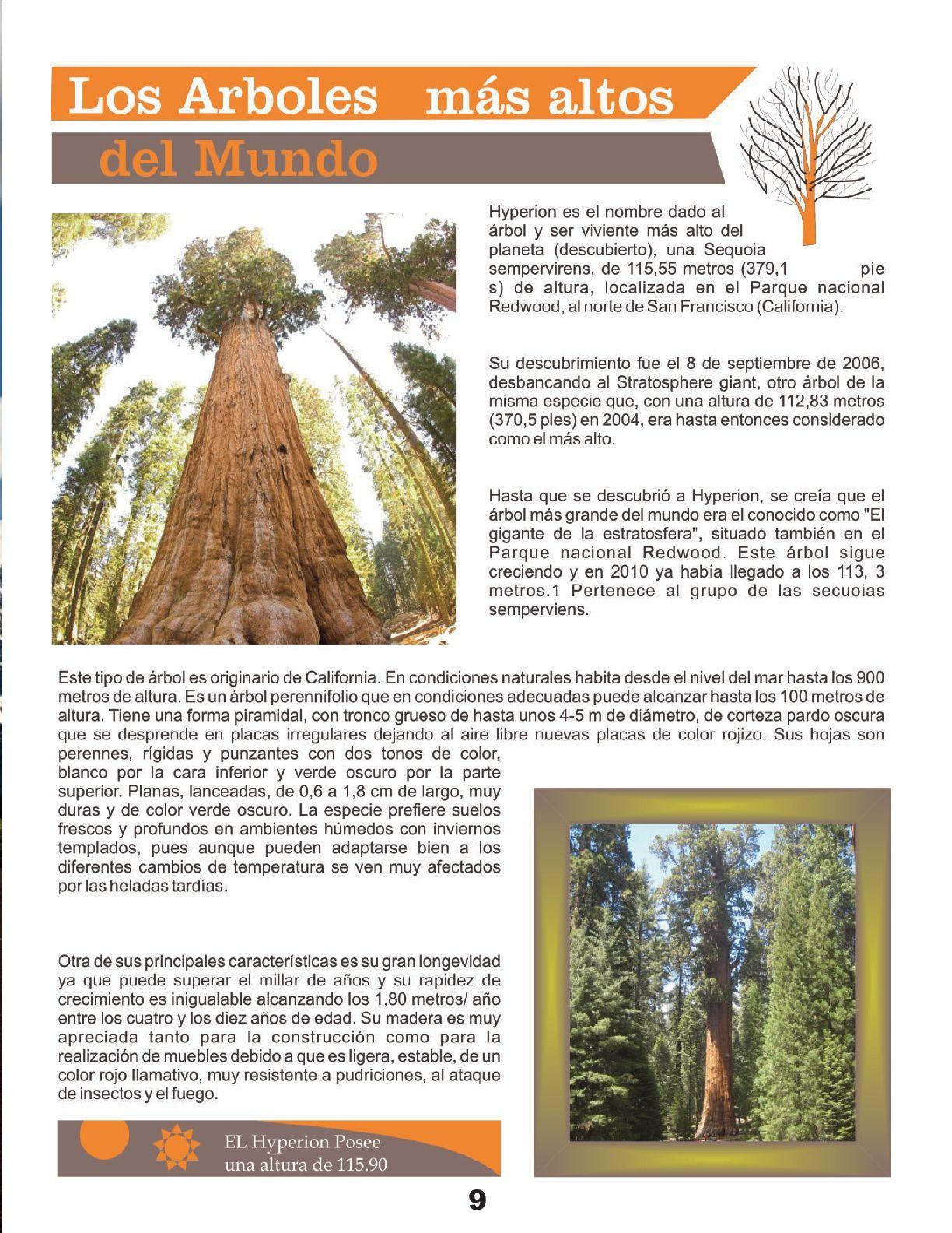 Pin By Julio Garcia E On Revista Ch Ivit Empresarial Octubre 2016  # Muebles Sequoia