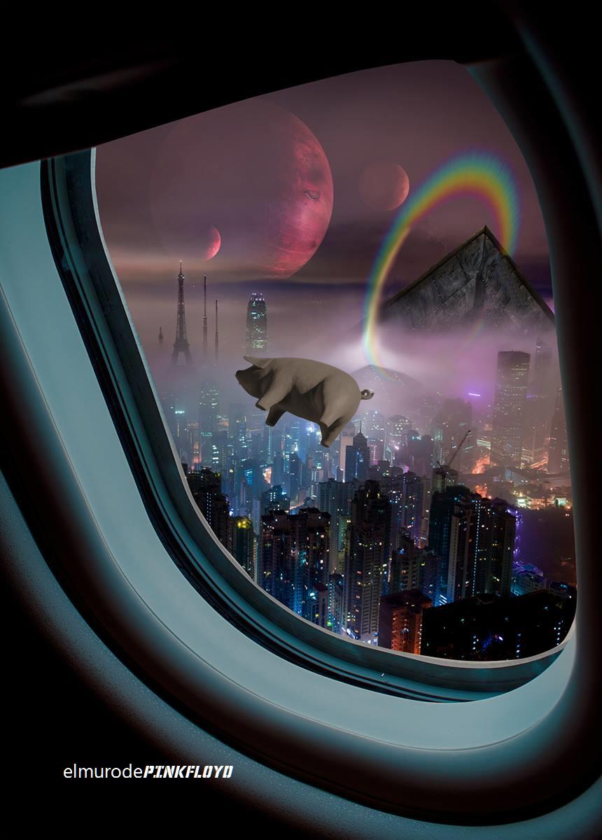 Pink Floyd Pigs On The Wing Pink floyd art, Pink floyd