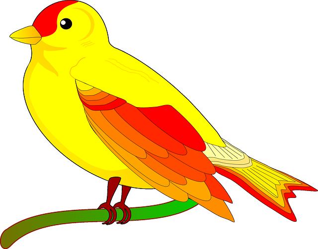 Image Gratuite Sur Pixabay Perroquet Oiseau Exotique Jaune Clipart Cliparts Gratuitos Cuentos