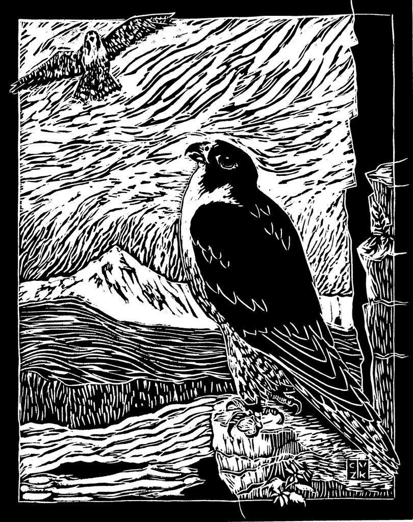 Peregrine linocut print