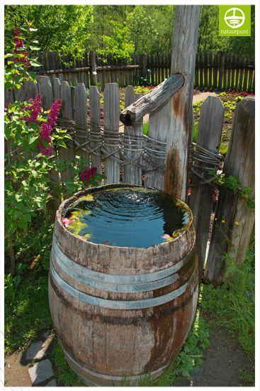 Water doet leven maak een mini vijver een kleine for Kleine tuinvijver