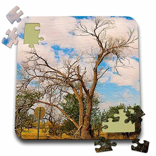 Jos Fauxtographee Realistic - An Awesome Shaped Old Tree On Highway 18 Near Enterprise, Utah in Southern Utah in Vibrant Colors - 10x10 Inch Puzzle (pzl_50472_2) 3dRose http://www.amazon.com/dp/B016J4Q3AG/ref=cm_sw_r_pi_dp_XSMvwb17F74YA