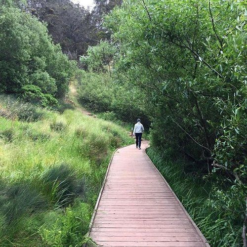 Hike Along San Francisco's New Crosstown Trail