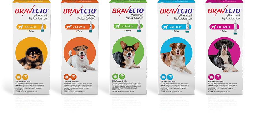 Bravecto topical tick treatment for dogs flea meds for