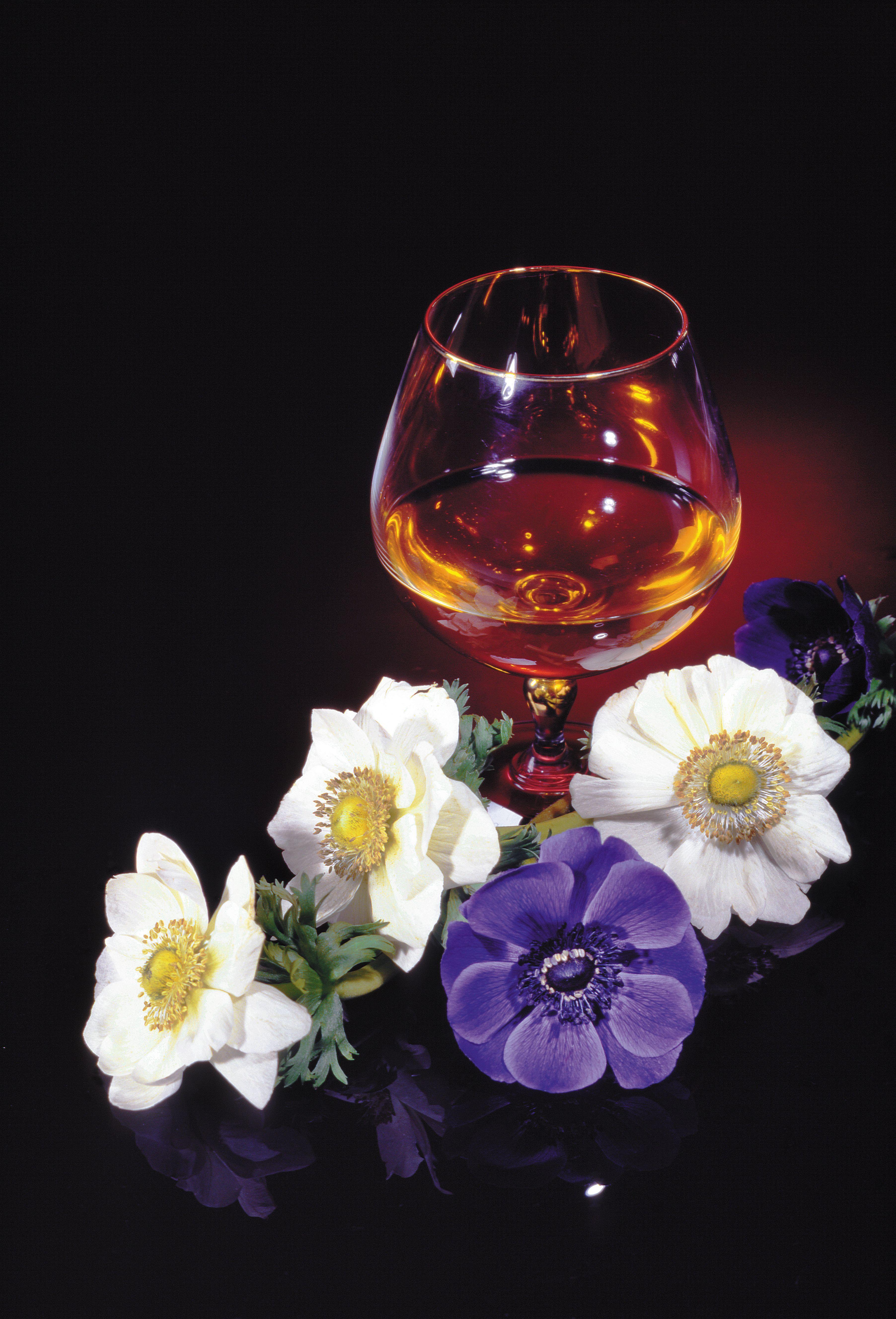 Тост про цветы и