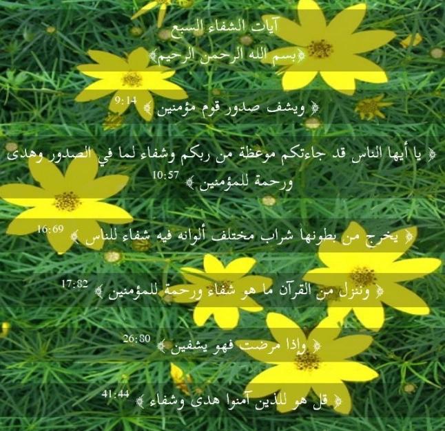 Pin On Islamic Websites
