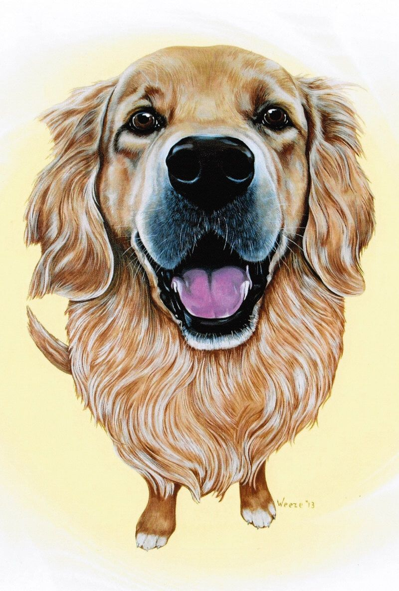 Golden Retriever Art Golden Retriever Print By Artbyweeze Golden Retriever Art Dog Paintings Dog Art