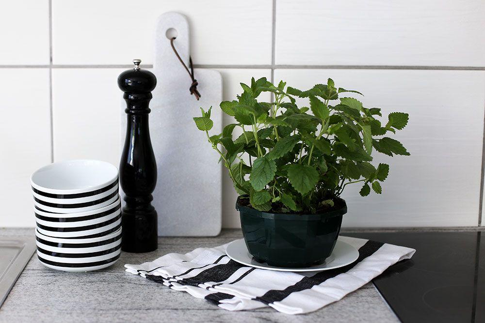 Küchenfronten verschönern ~ Kreative diy ideen wie man die eigene küche verschönern kann