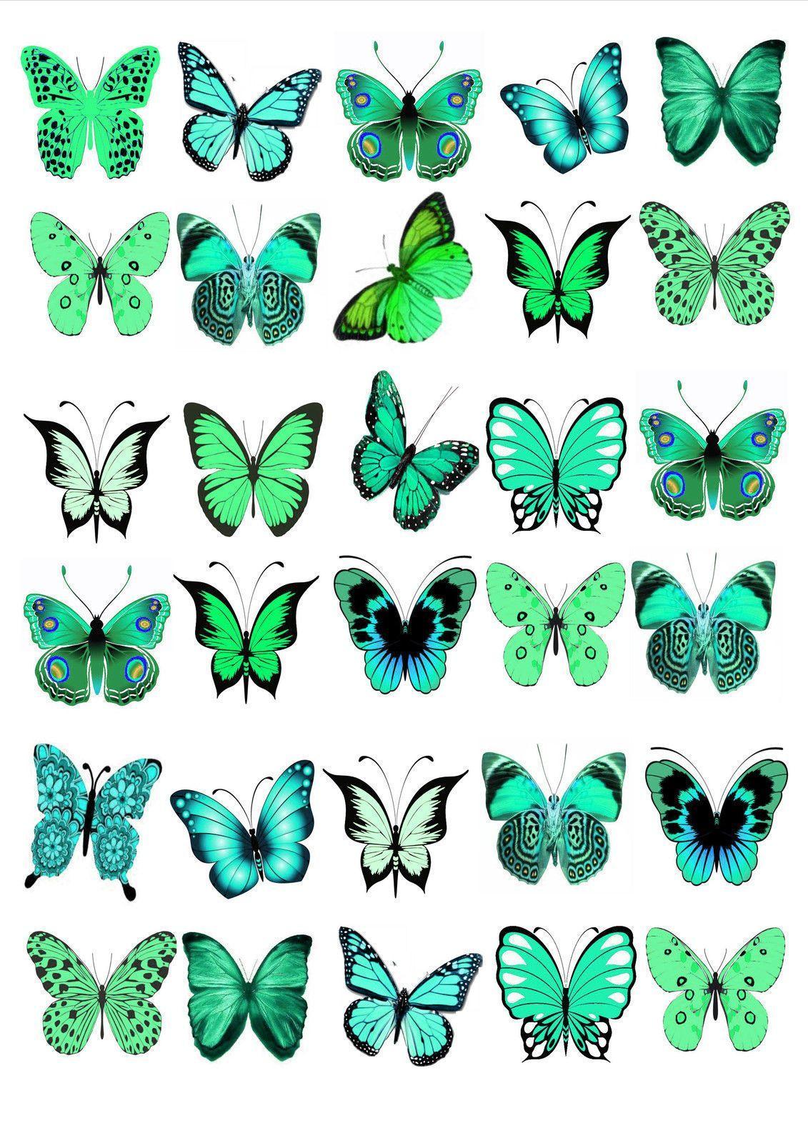 30 x turquoise mix butterflies birthday wedding edible