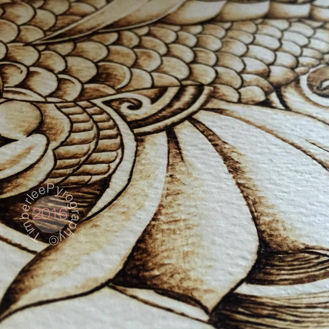 Koi, tattoo, pyrography on paper. Close up image of our tattoo style japanese koi pyrography on Watercolour paper. Designed and burned by #TimberleeEU