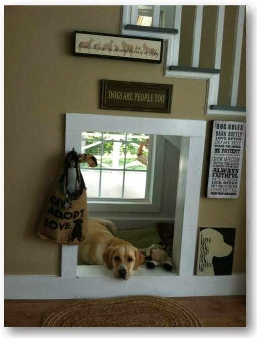 Znalezione Obrazy Dla Zapytania Szafa Zabudowana Legowisko Dla Psa Indoor Dog House Pet Spaces Dog Rooms