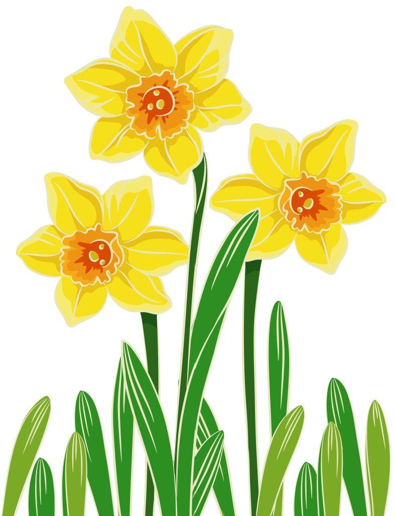 Egg Carton Daffodils Free Printable Crafts Egg Carton Daffodils