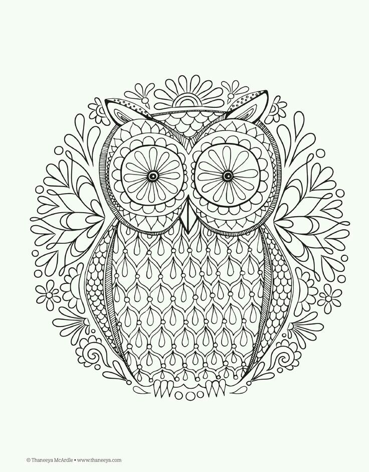 more advanced detailed owl mandala colouring page great to colour for autumn fall time or decorate as a simple craft