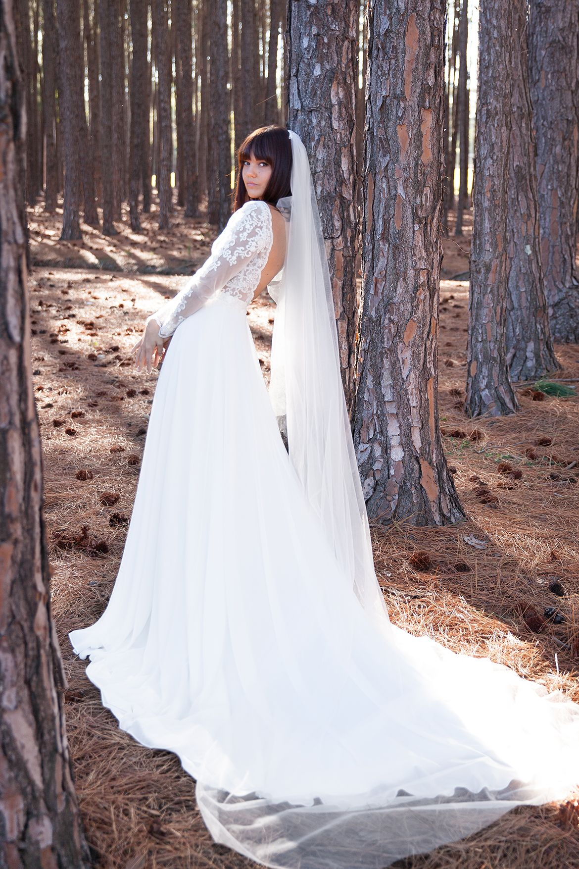 Lace arm wedding dress  long lace sleeve wedding dress with low back and train