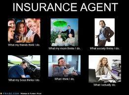Image Result For Cat Adjuster Memes Insurance Meme Shop